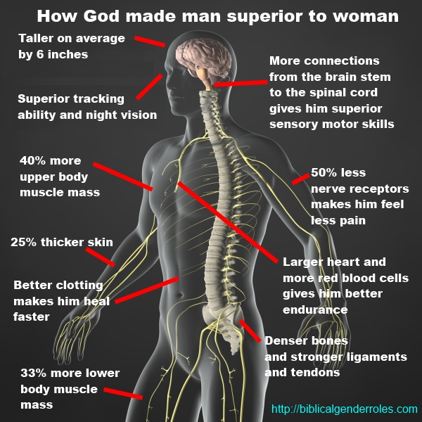 the superiority of men over women Op wants us to test his beliefs on the superiority of men over women had this superiority complex men are better than women because men are better.