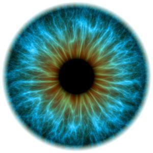 news-eyes-have-it-blue-eye_58914_990x742