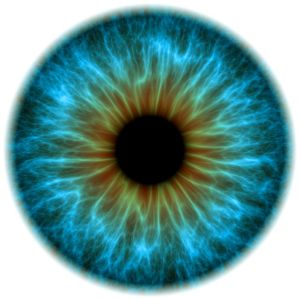 news-eyes-have-it-blue-eye_58914_990x742
