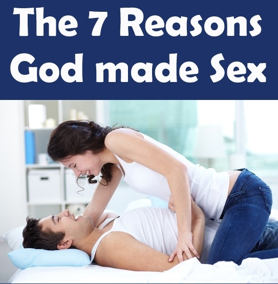 Before marriage bible sex