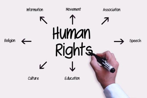 Hasil gambar untuk human right